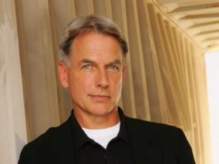 Mark Harmon picture, image, poster