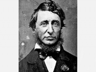 a biography of henry david thoreau an american transcendentalist author Substantial work on the transcendentalist  additions to the editions of ralph waldo emerson and henry david thoreau  anti-american approach to biography.