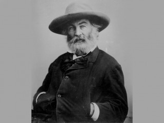 Walt Whitman picture, image, poster