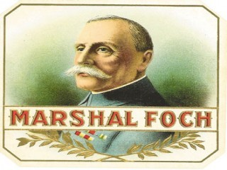 Ferdinand Foch picture, image, poster