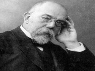 Robert Koch picture, image, poster