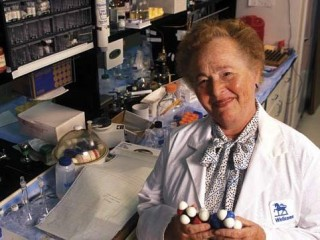 Gertrude B. Elion picture, image, poster