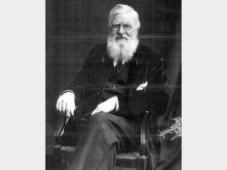 Alfred Russel Wallace picture, image, poster