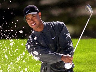 Tiger Woods picture, image, poster
