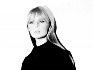 Nico picture, image, poster