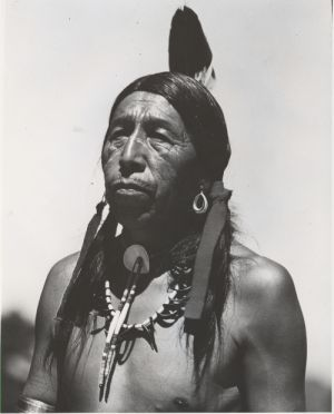discussion of black elk speaks essay Discussion of black elk speaks black elk was a holy man of the oglala band of the lakota sioux nation black elk interpreted his life as a holy man as the story of a.