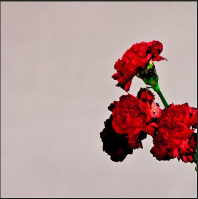 John Legend collaborates with Pharrell, Q-Tip and Hit-Boy for upcoming album